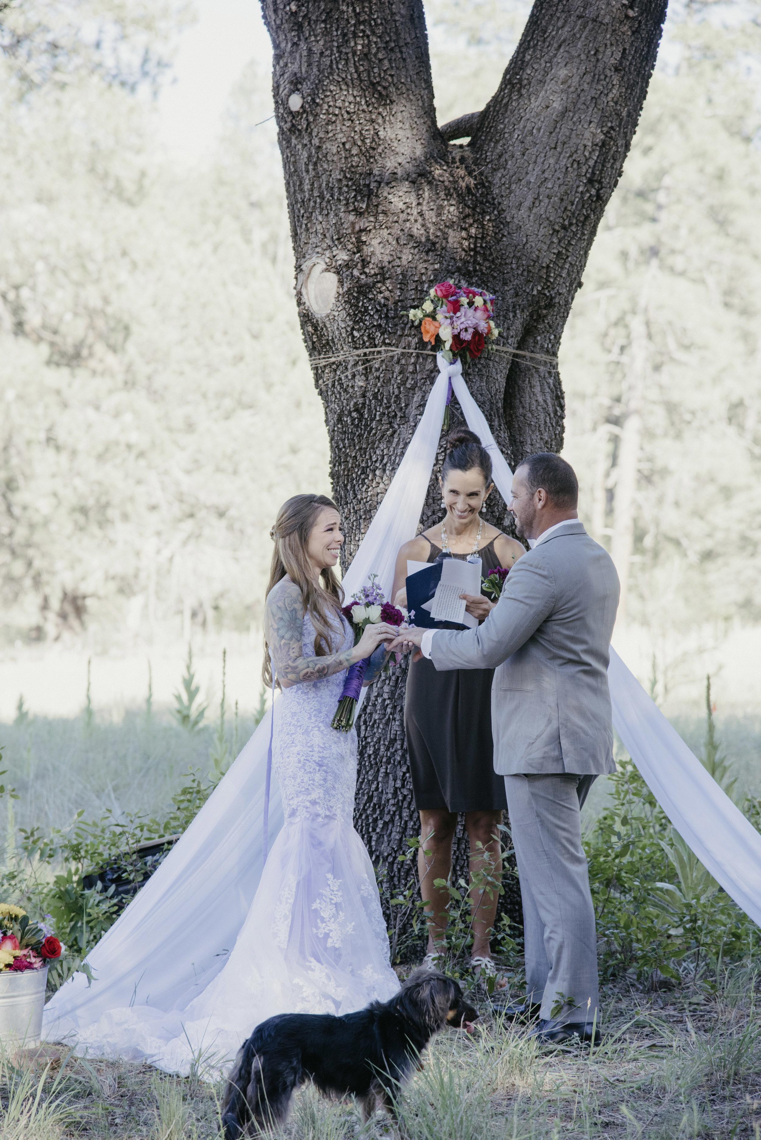 Moss Wedding 5
