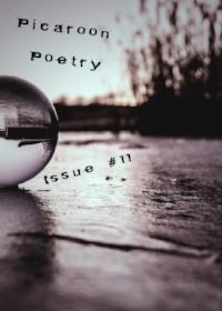 picaroon-issue-11.jpg