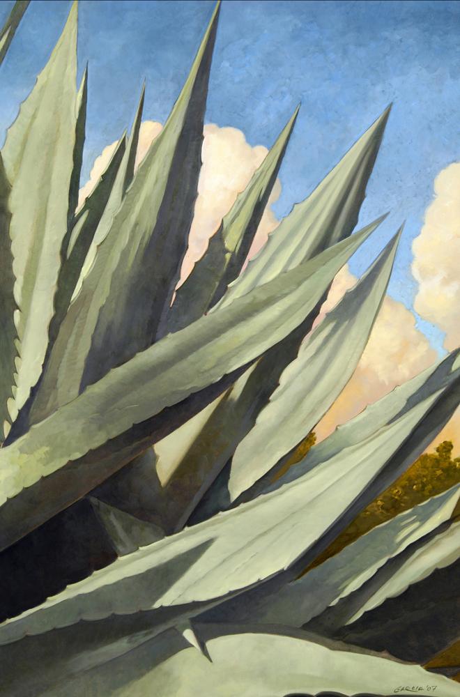 Agave Americana 24x36 oil / canvas