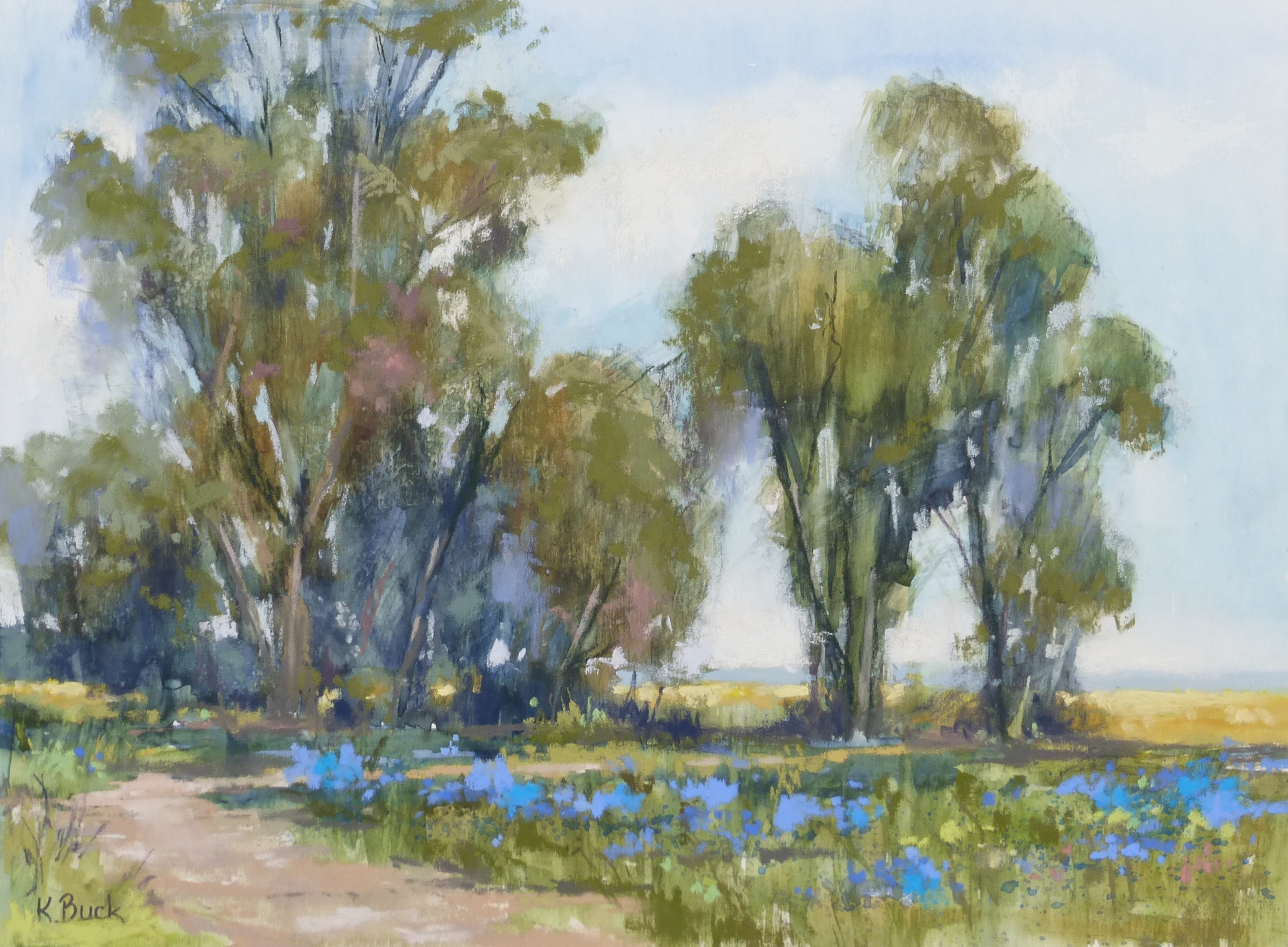 Blueberry Fields.JPG