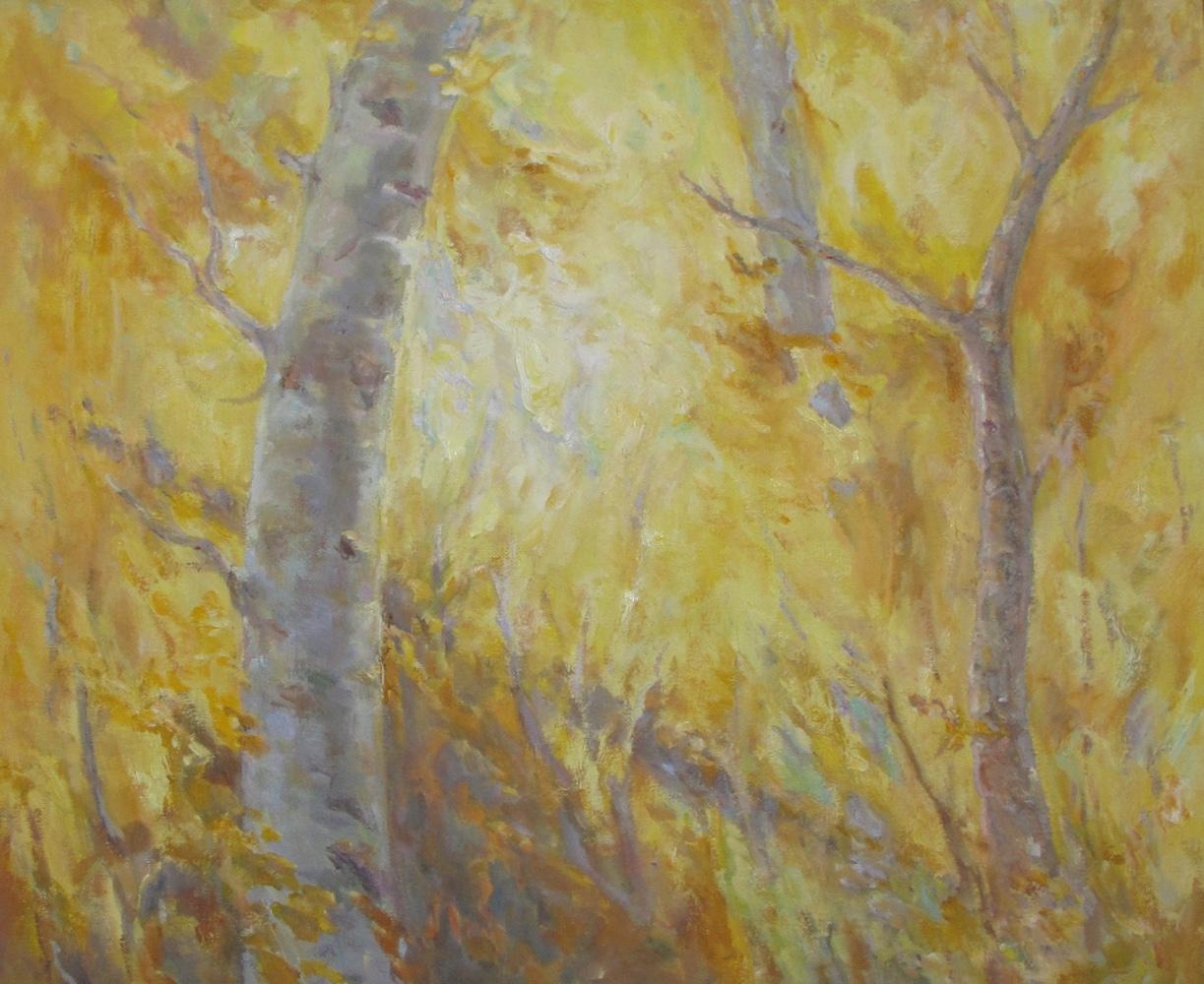 Aspen Glow    Oil   20 x 24