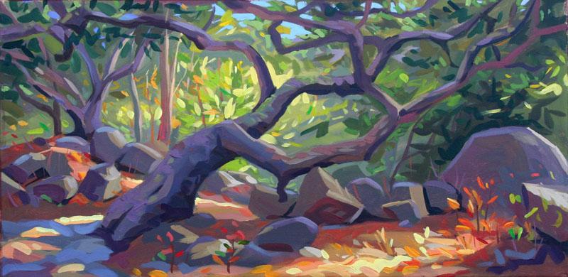 "San Ysidro Canyon Oaks, Acrylic on Canvas 12x24"""
