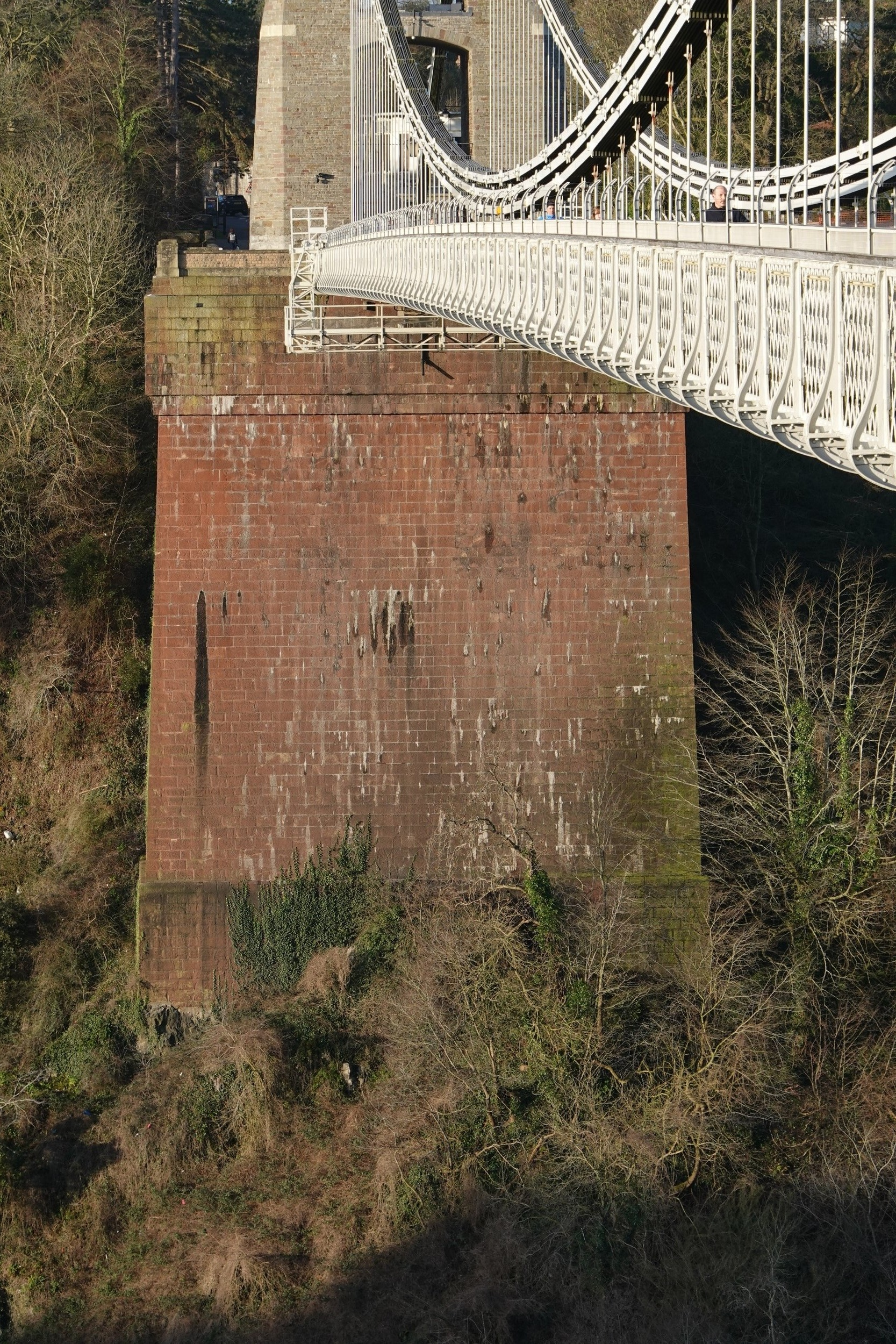 Figure 2 The gorge face of the Leigh Woods pier
