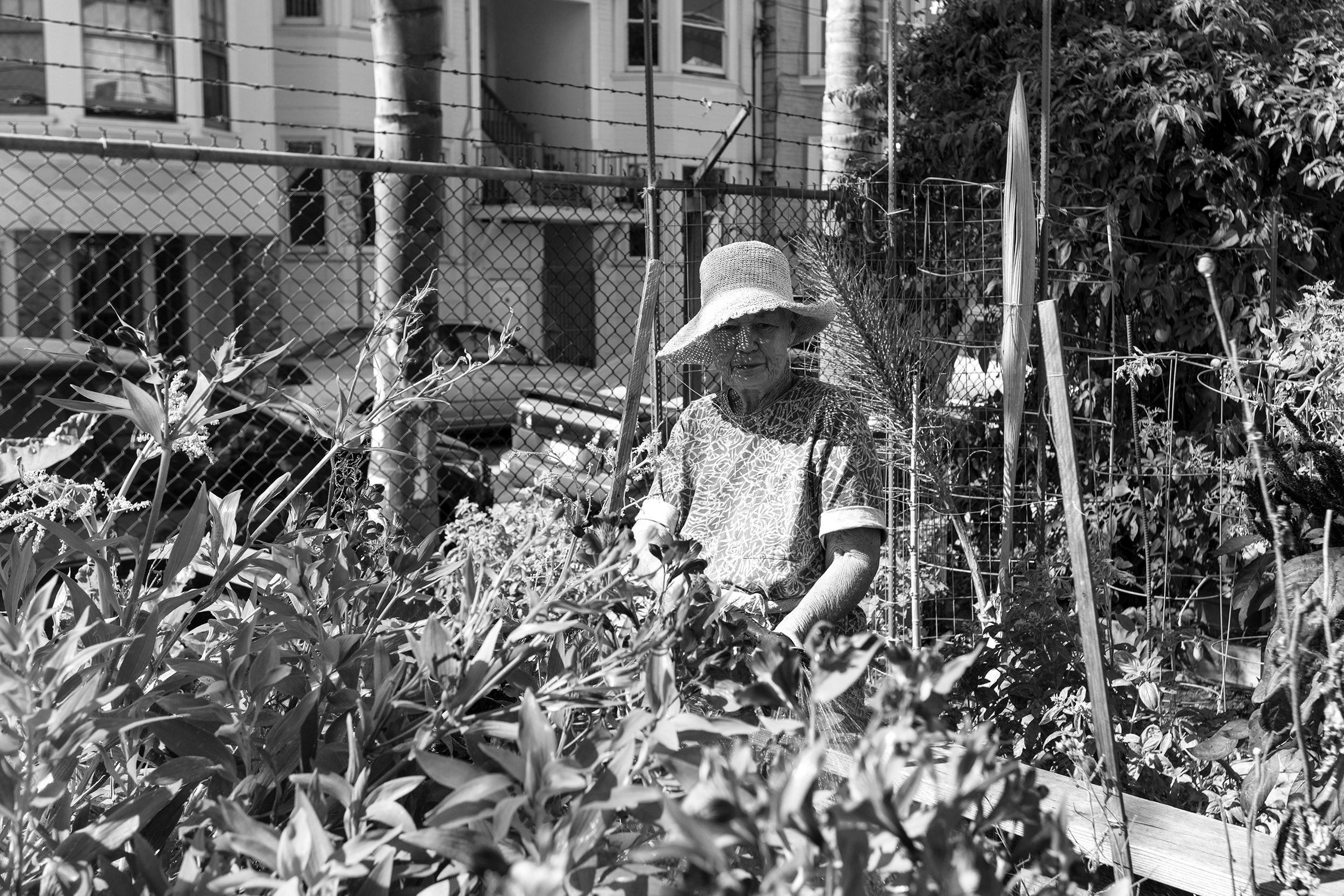 159_Scussel - Lotta at Community Garden - Bird & Dearborn B&W.jpg
