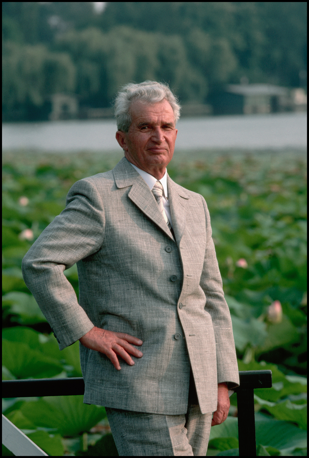 August 1989, Bucharest, Romania --- Romanian dictator Nicolae Ceausescu poses beside a pond blooming with water lilies at his villa near Bucharest in August 1989.