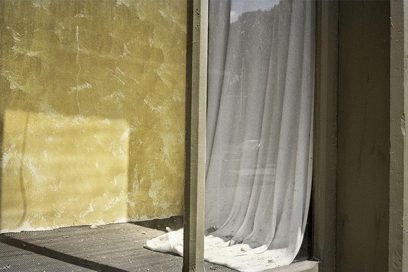 Copy of GOLDBERG_window.jpg