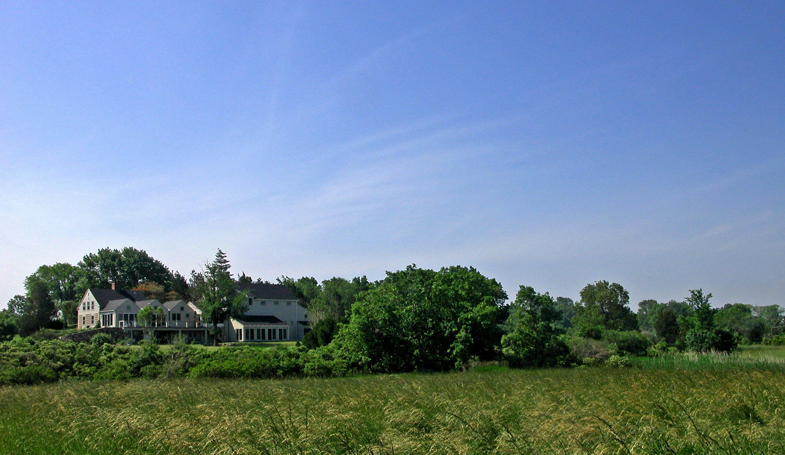 From Field 1.jpg