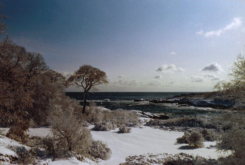 Hemenway Album Scans 7-21-11 (17).jpg