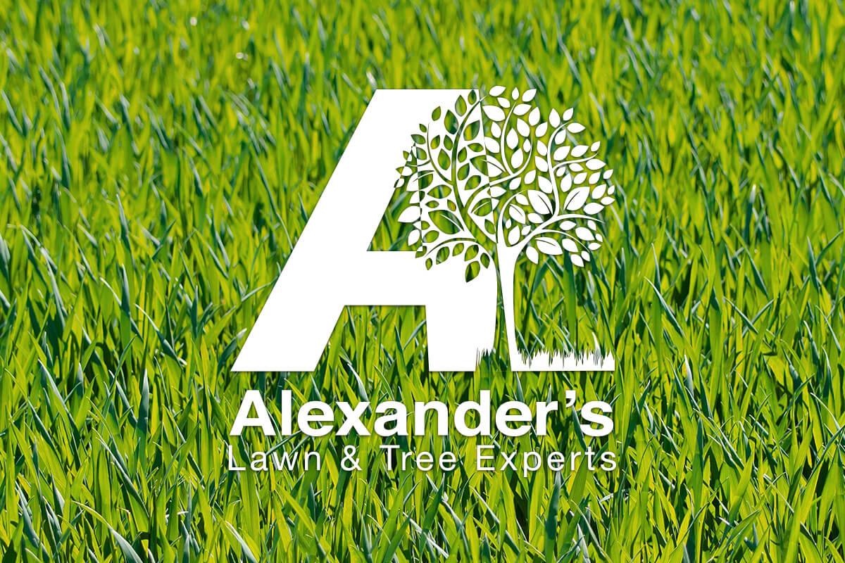 Alexander's Lawn & Tree Experts Logo