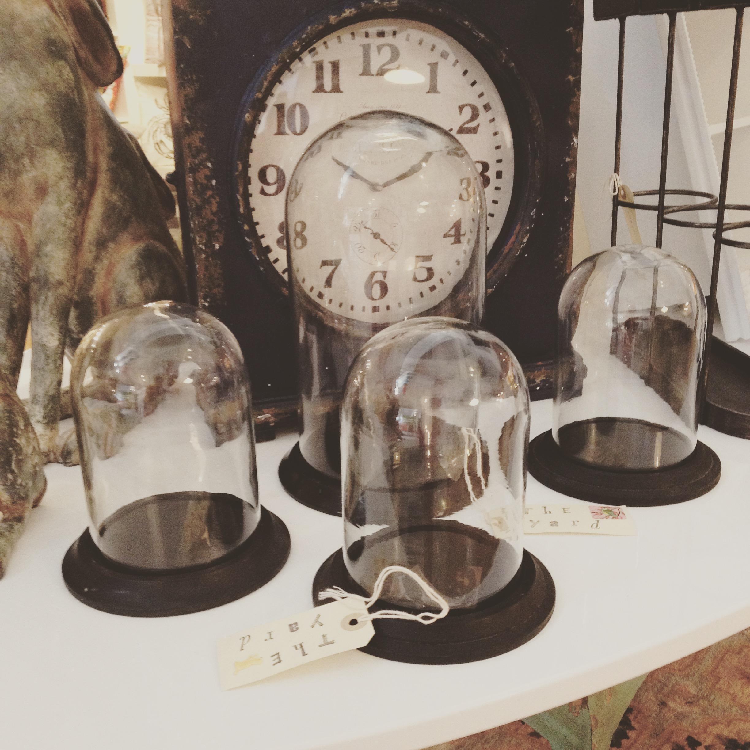 Mini and medium glass domes