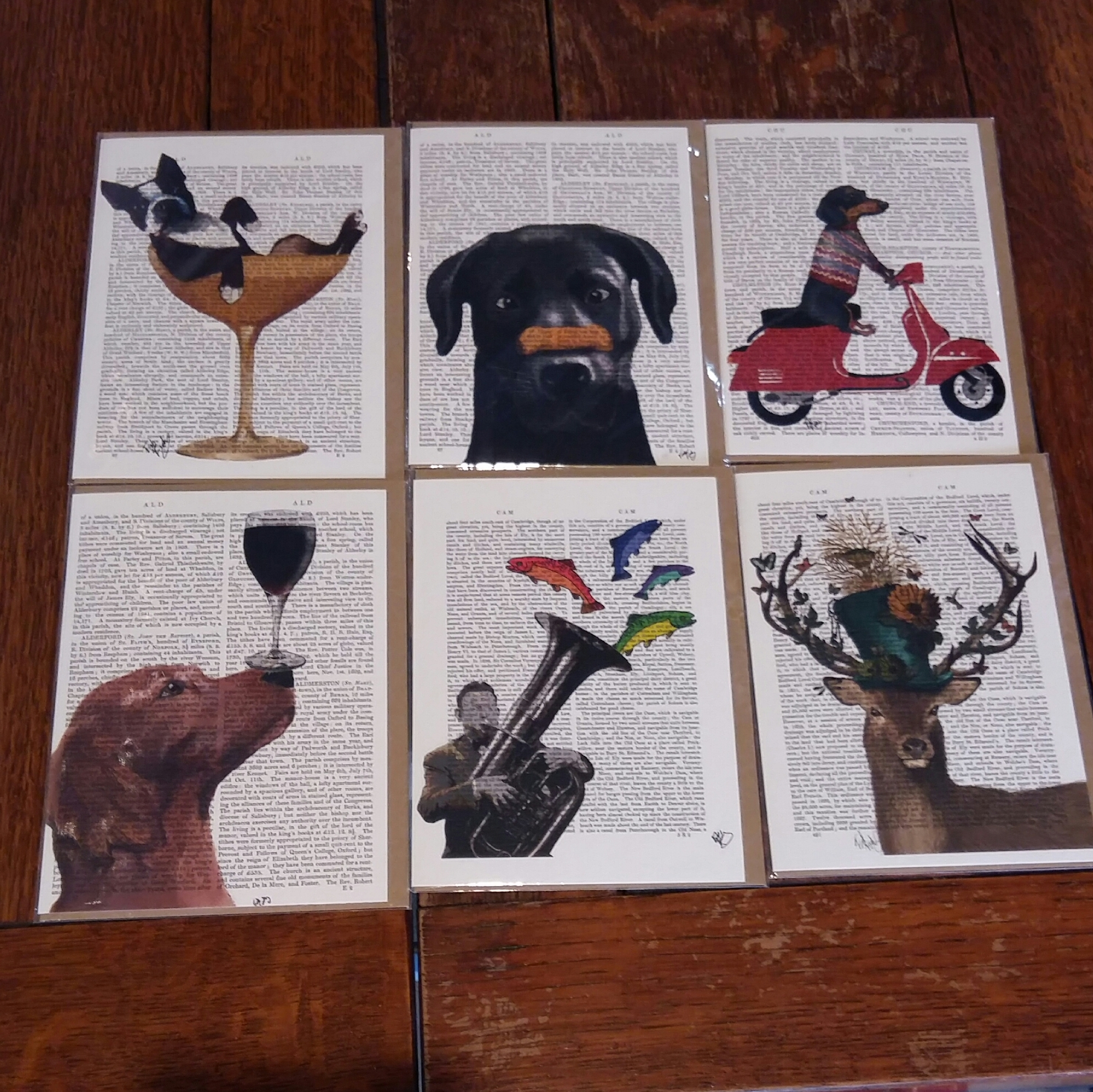 Here is a selection of our new cards designed in Salisbury