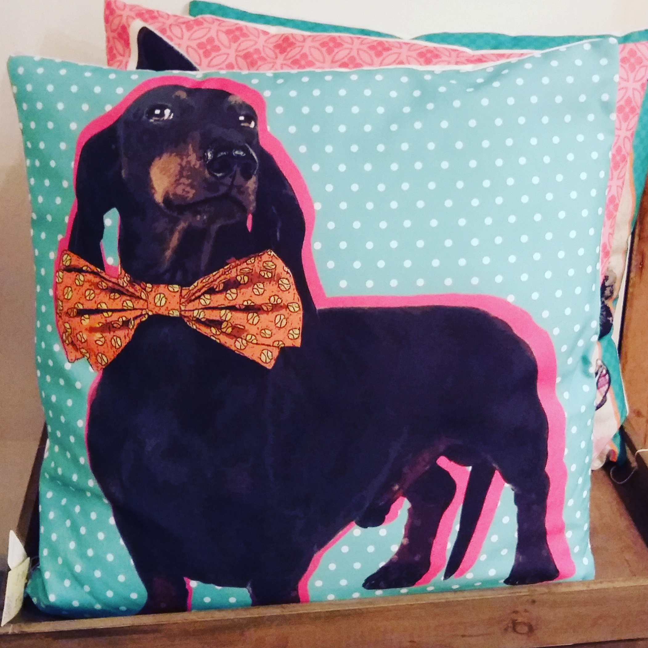 Large dog print cushion in three designs only £15 each