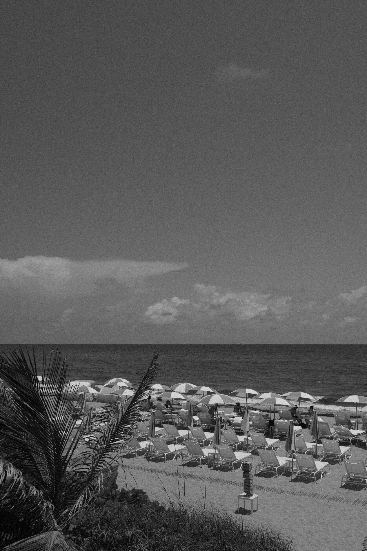 Four seasons palm beach   PHOTOGRAPHY of property and restaurants at the four seasons palm beach.