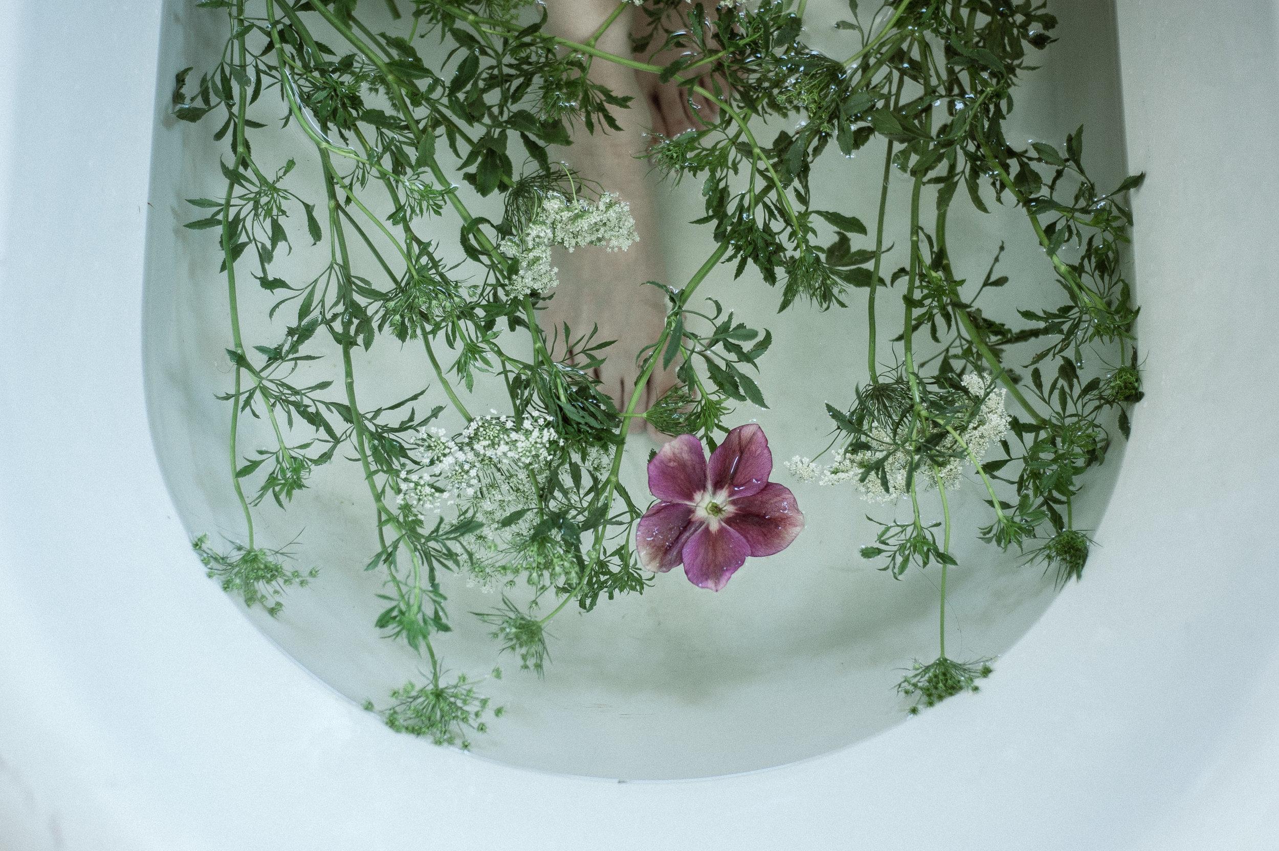 fern + floret botanical co - twin cities, mn wedding and event florist - wedding floral design - minneapolis minnesota - st paul - saint paul - mpls - wedding florist - studio apparatus st. paul mn