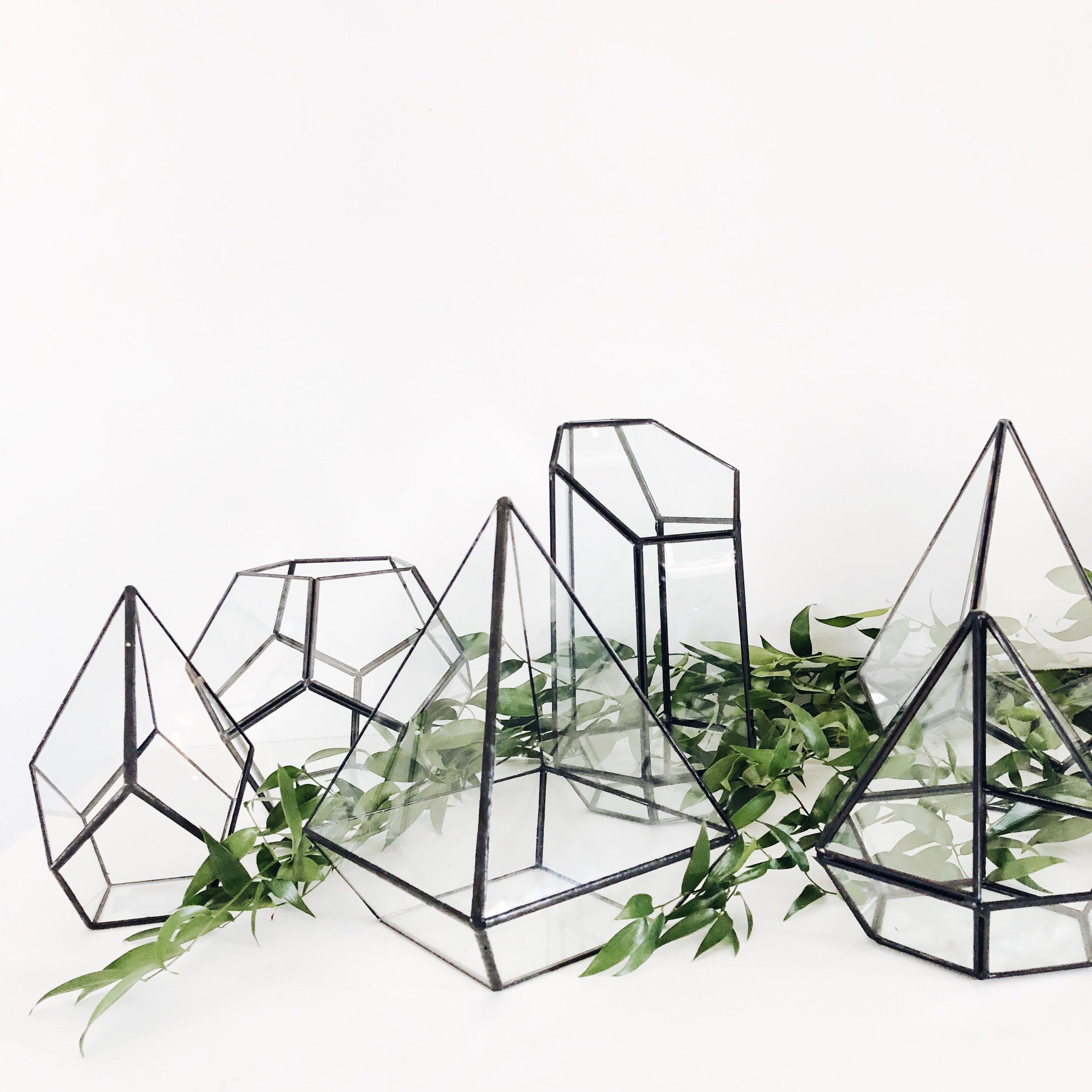 black geometric terrariums