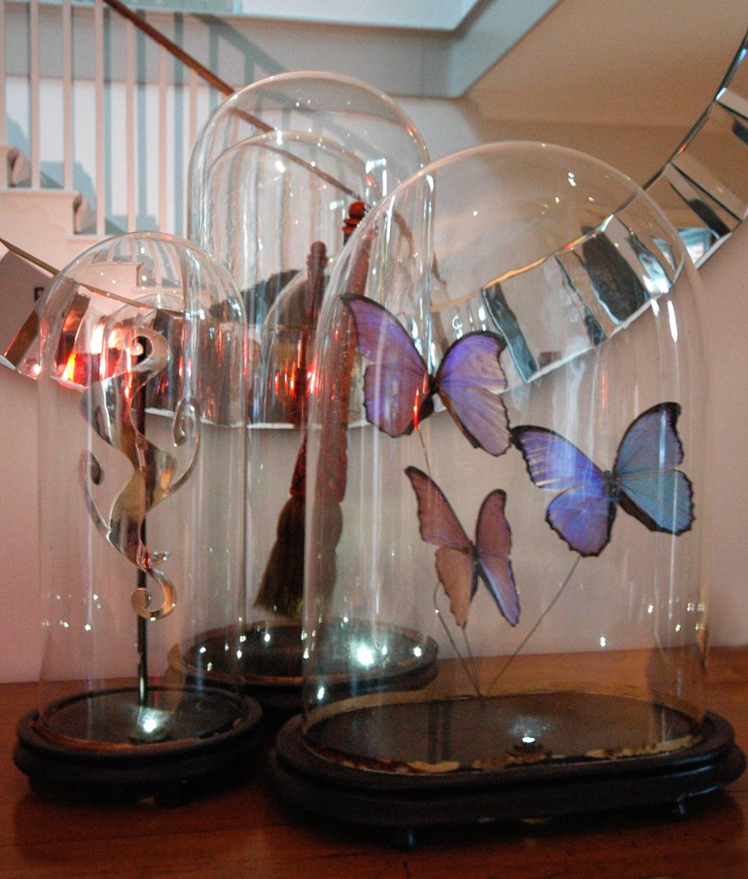 Bell jars.jpg