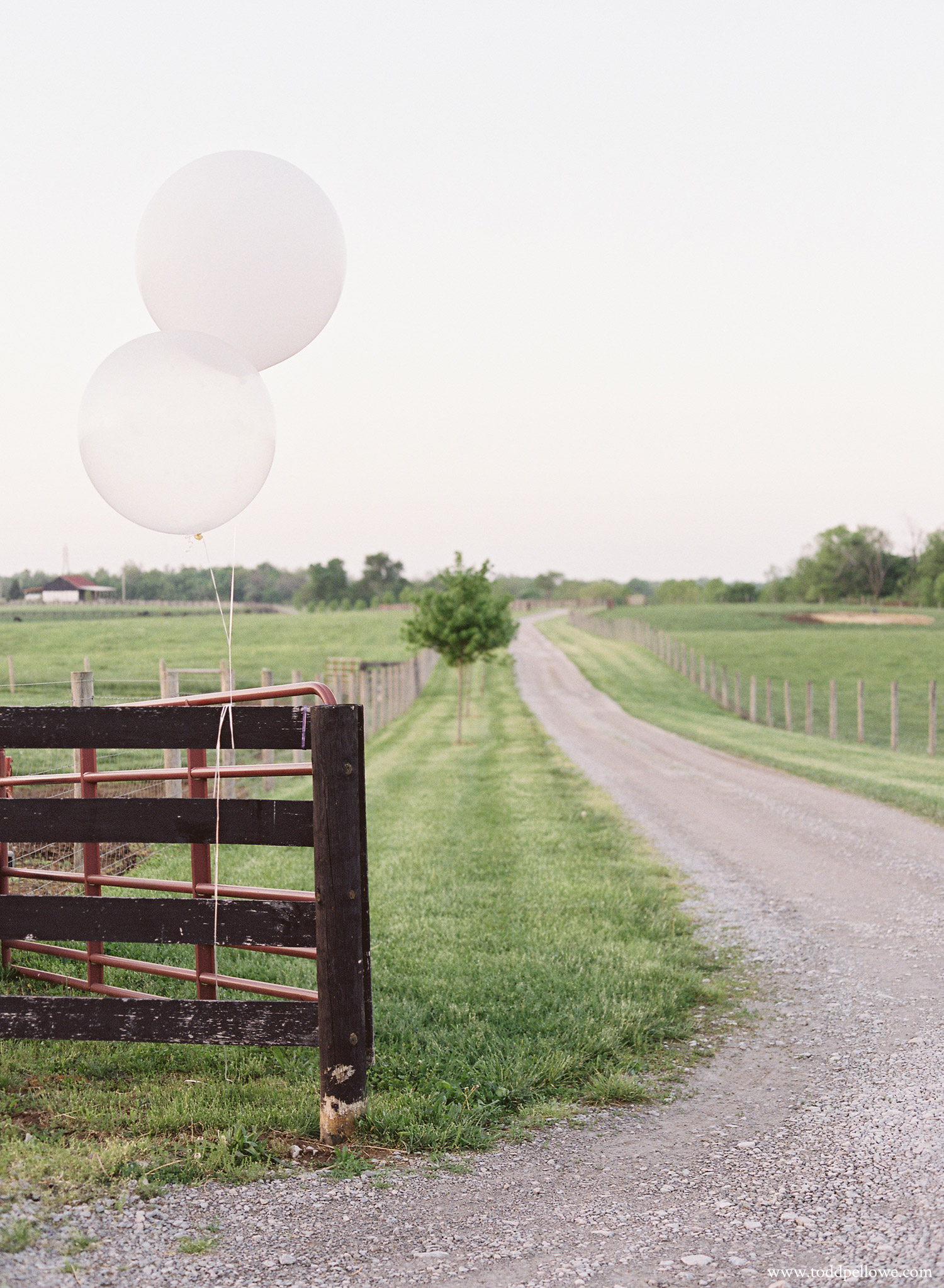 01-long-ridge-farm-wedding-shelbyville-016.jpg