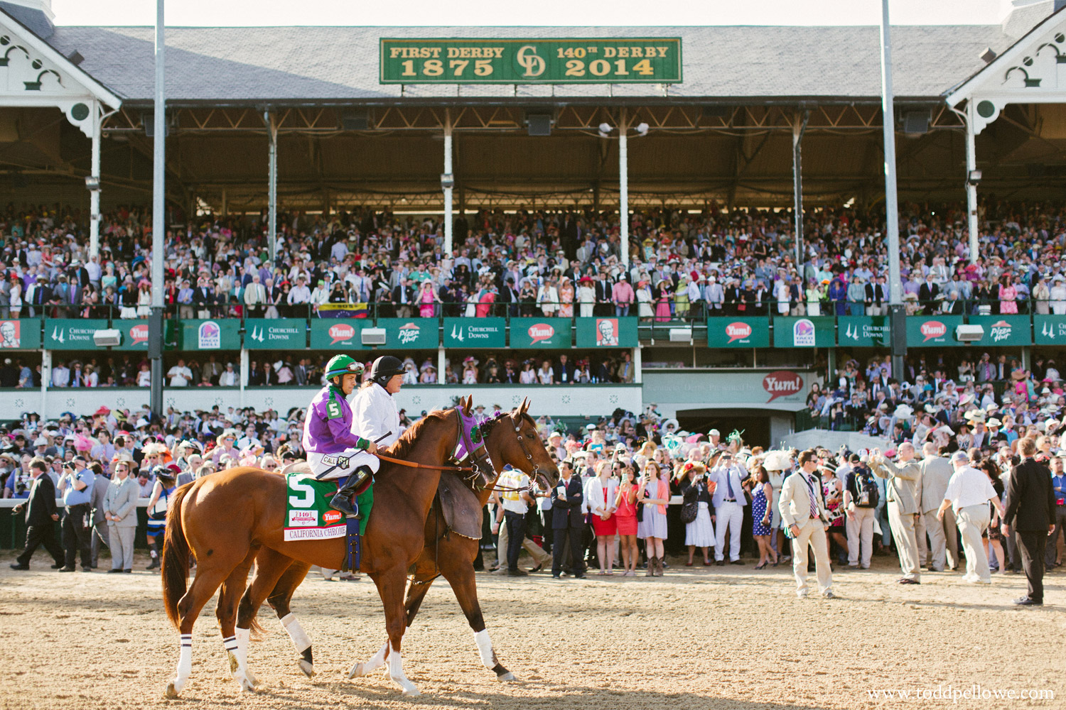 California Chrome at Churchill Downs before Derby