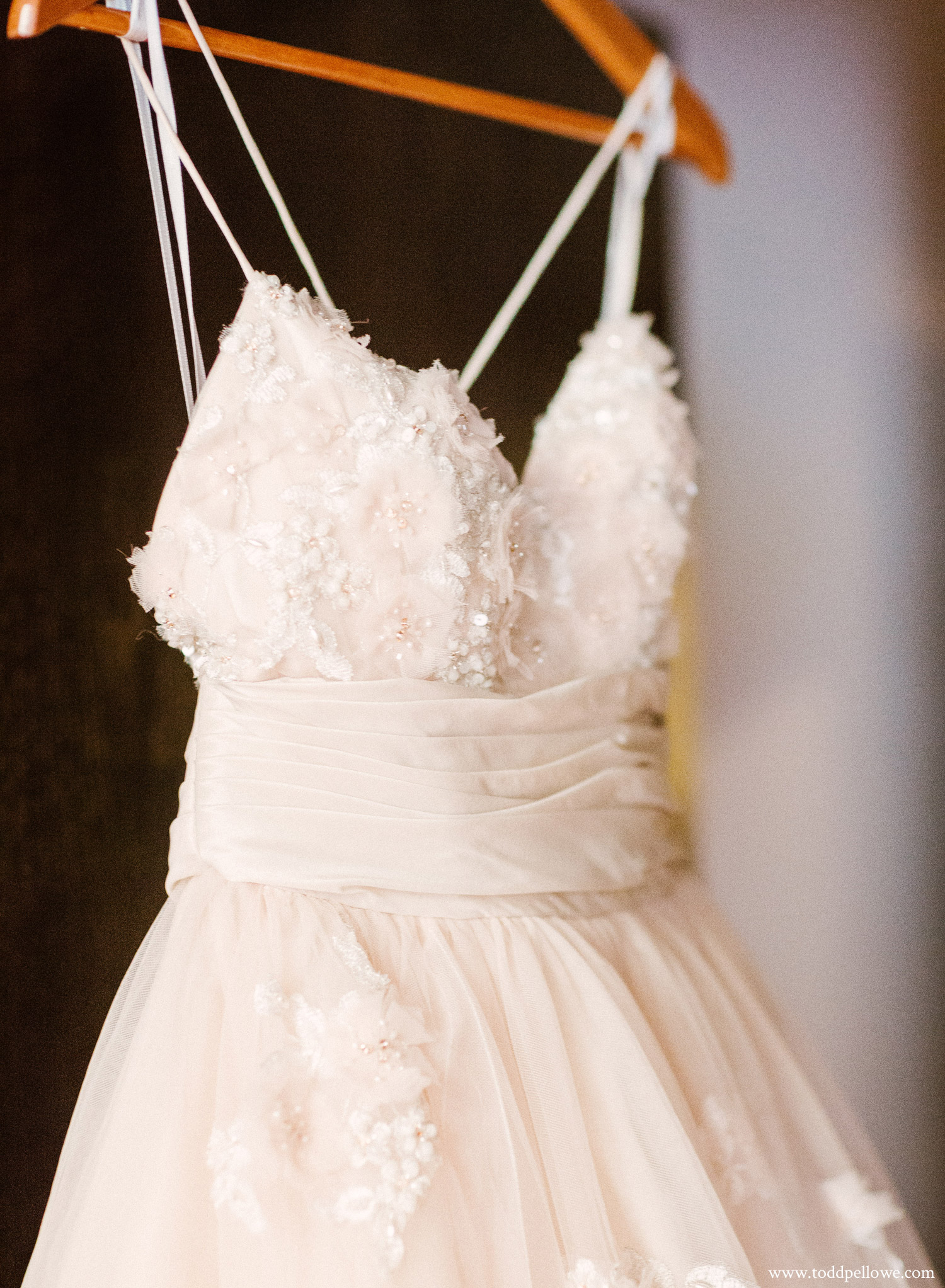 Stunning Louisville wedding dress