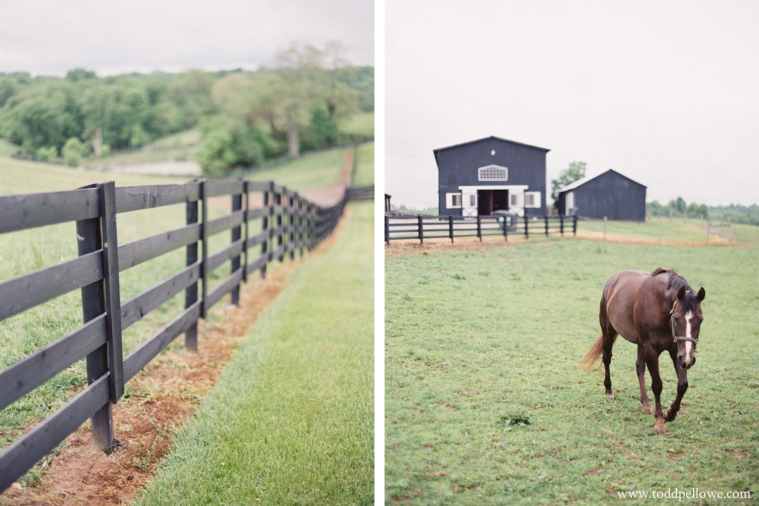 11-kentucky-farm-wedding-photography-008.jpg