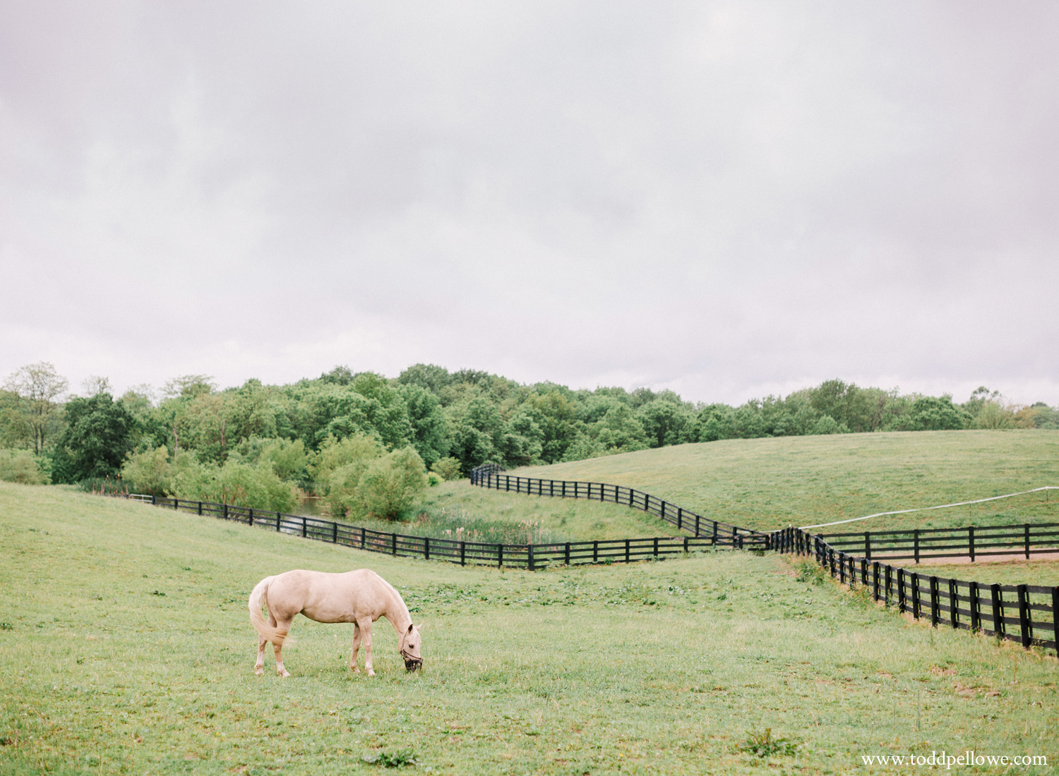 38-kentucky-farm-wedding-photography-106.jpg