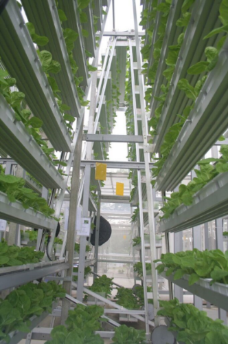 "A vertical farming system developed by ""Index: Design to Improve Life."" (Photo: Courtesy Index)"
