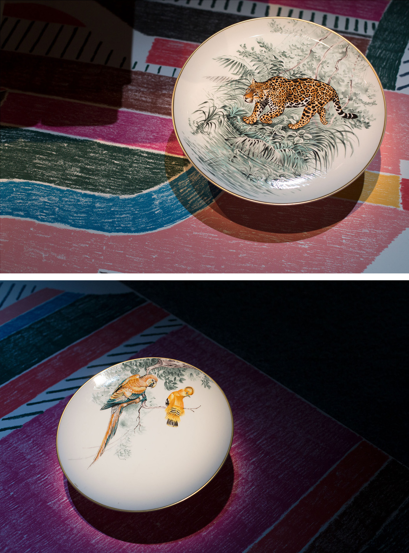 Porcelain plates from the Carnets d'Equateur collection, featuring paintings by Robert Dallet.