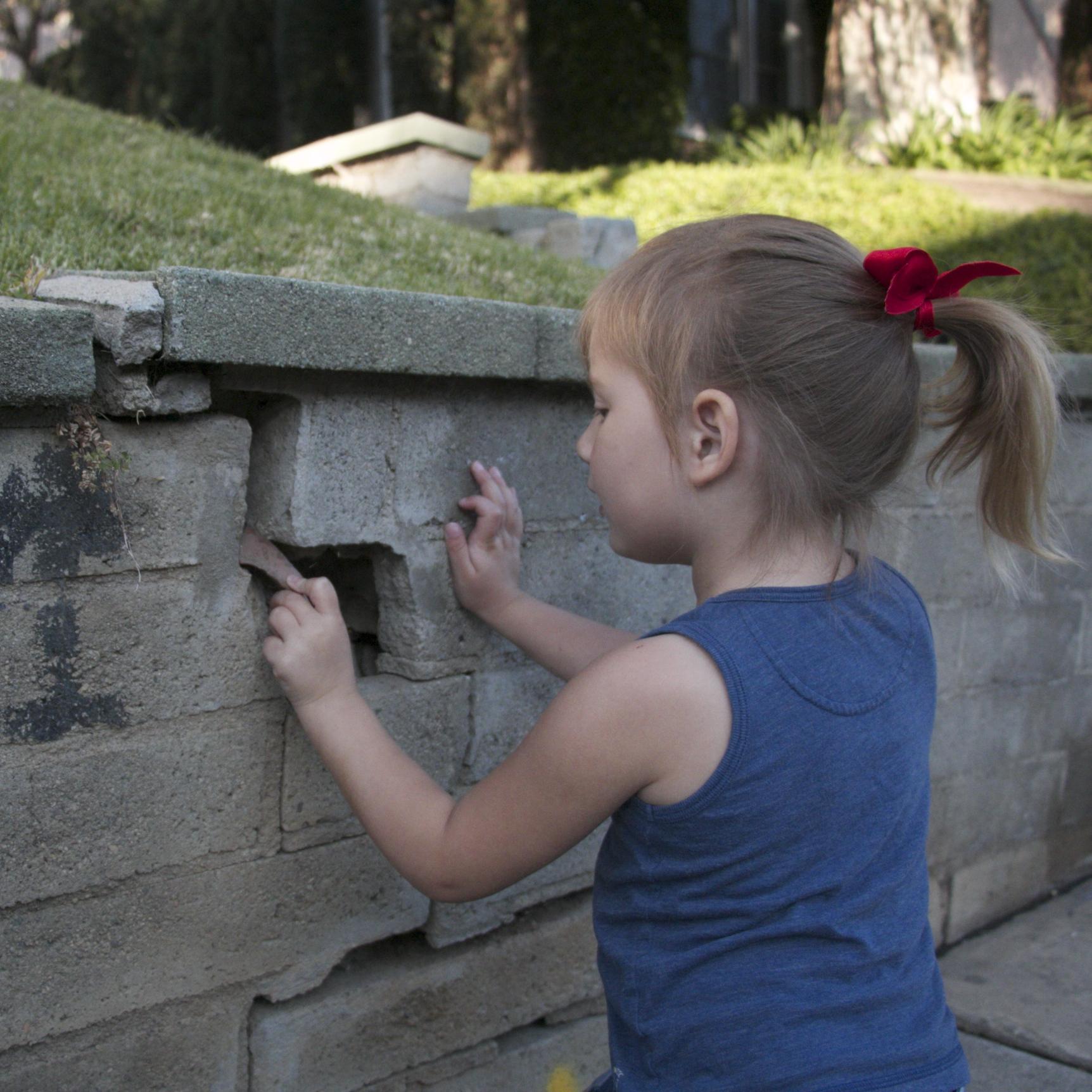 Mending Wall?