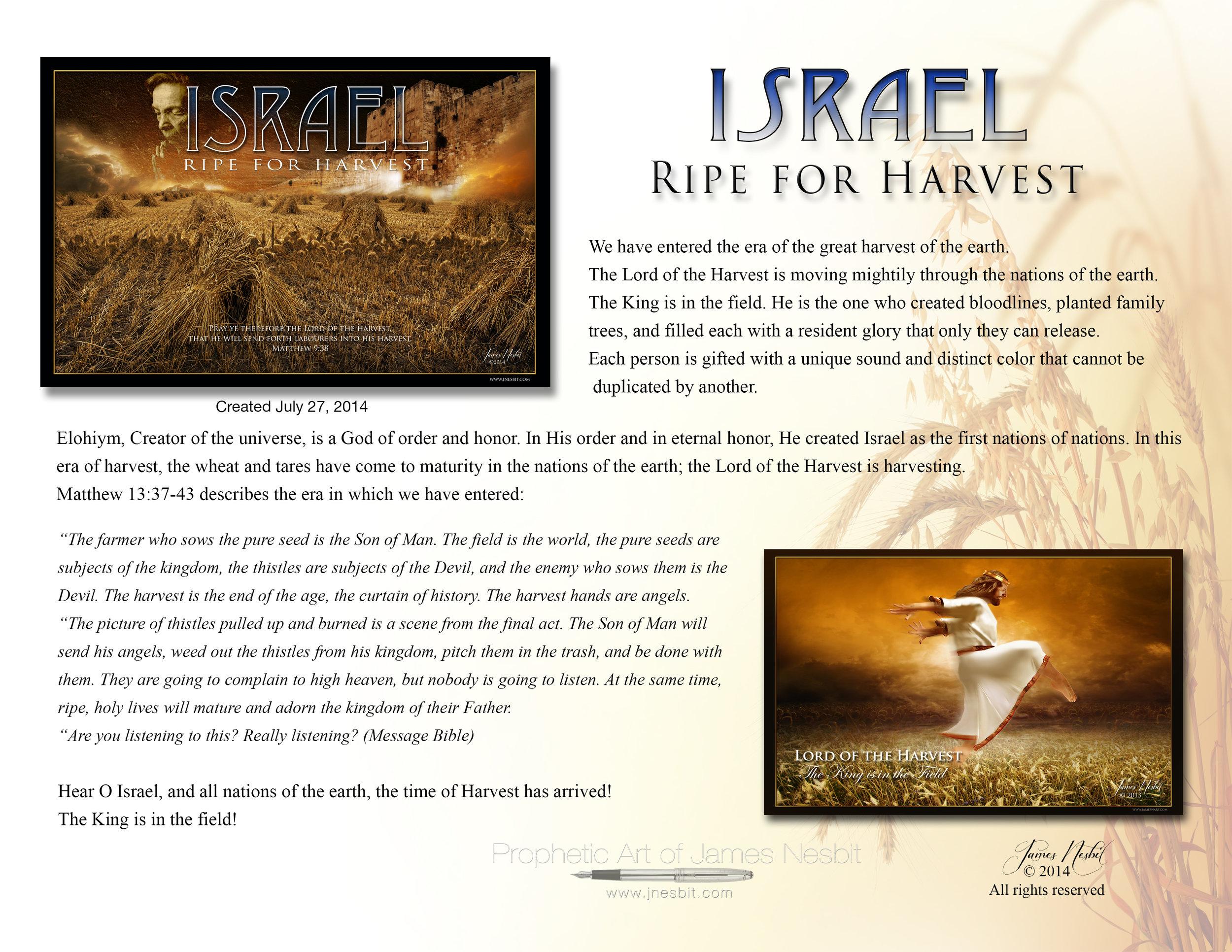 Ripe for Harvest description .jpg