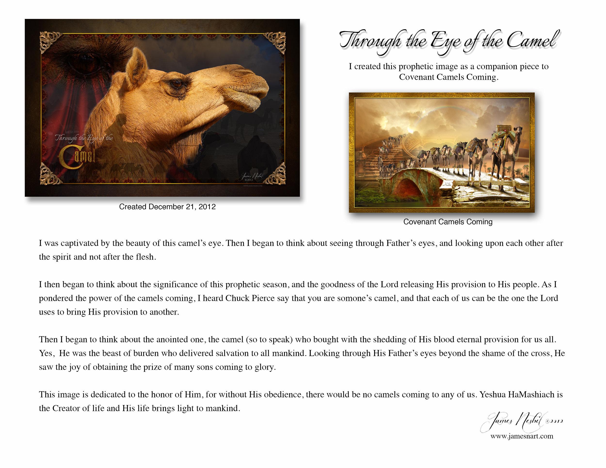 Eye of the Camel .jpg