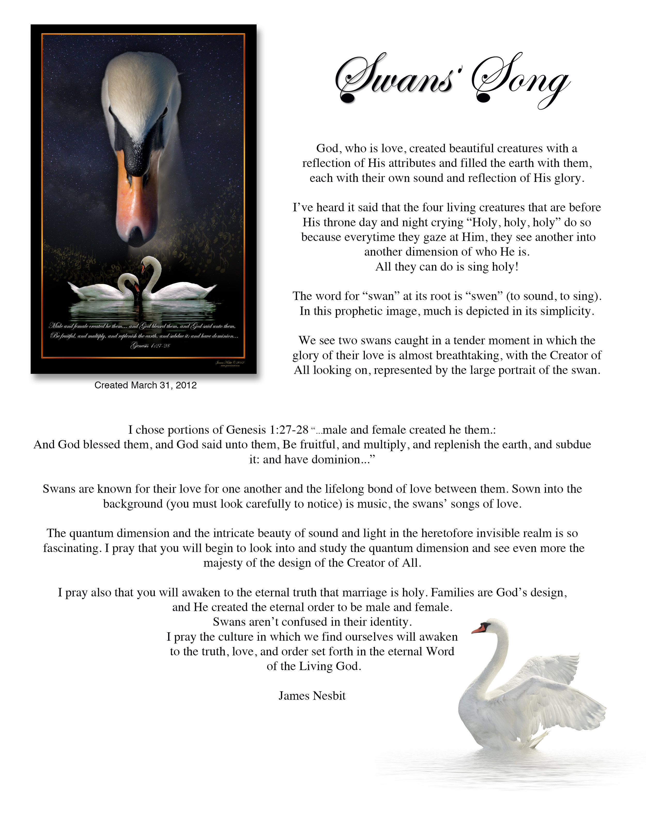 Swans Song Description.jpg