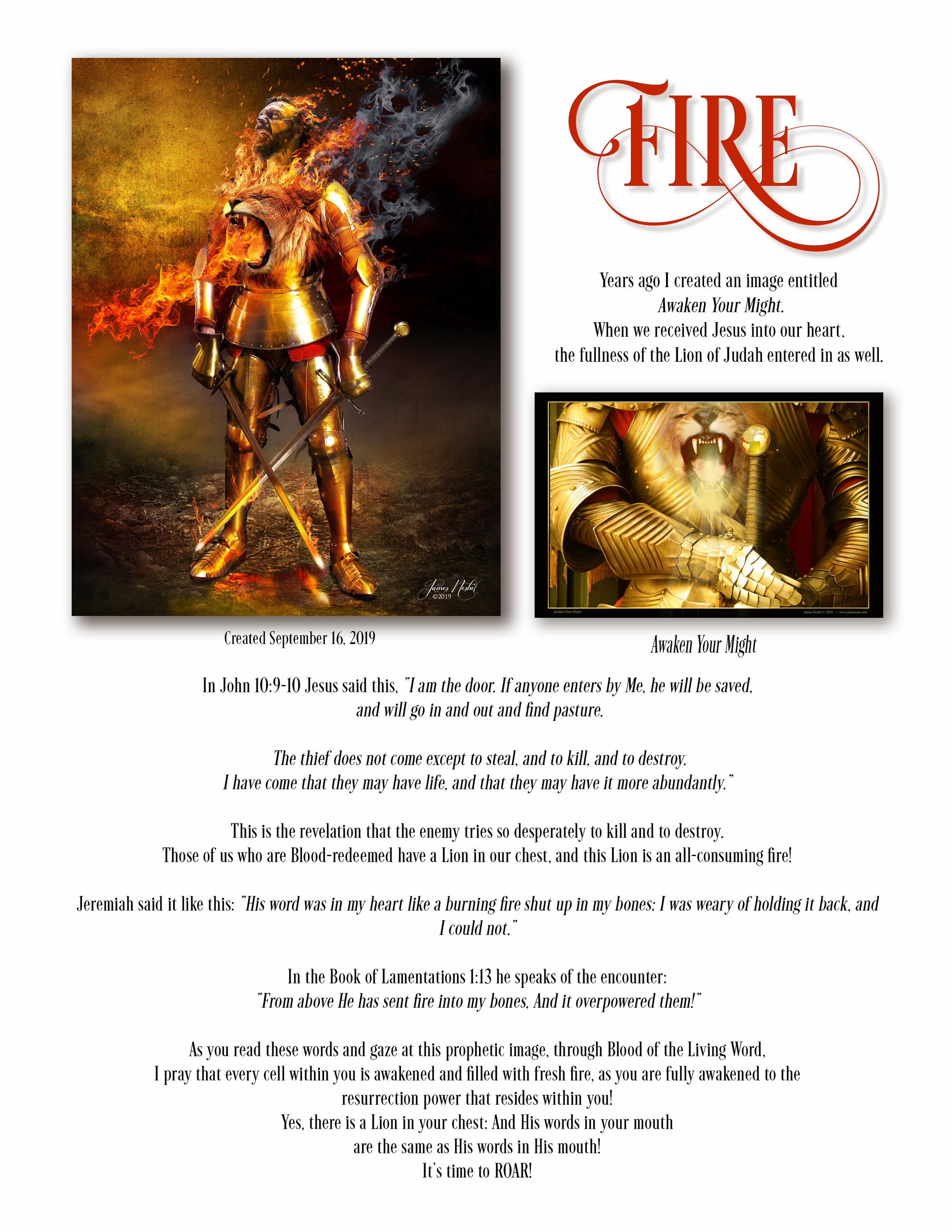 Fire Description  copy.jpg