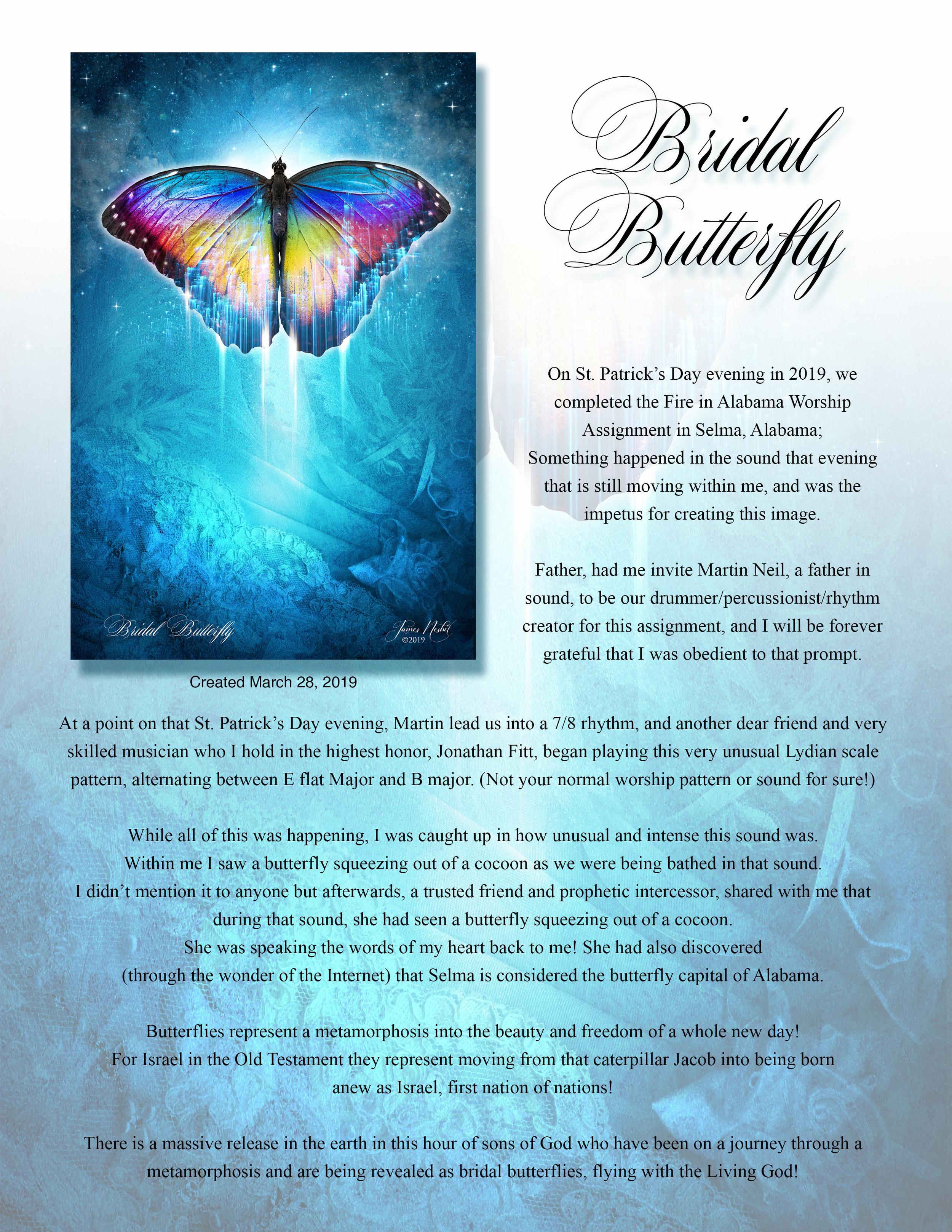 Bridal Butterfly  Descrip  copy.jpg