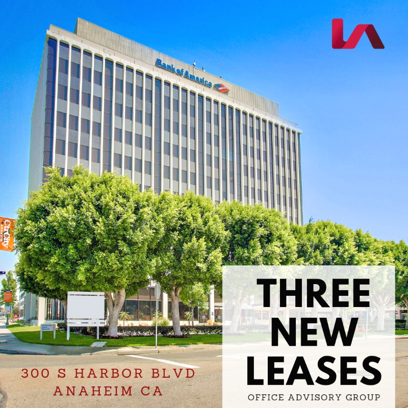 Three++New++leases.jpg