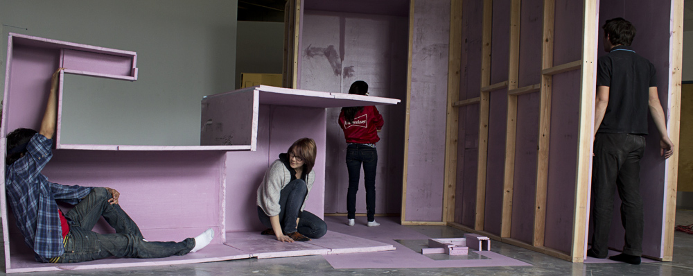 pink lab (activated),  2012