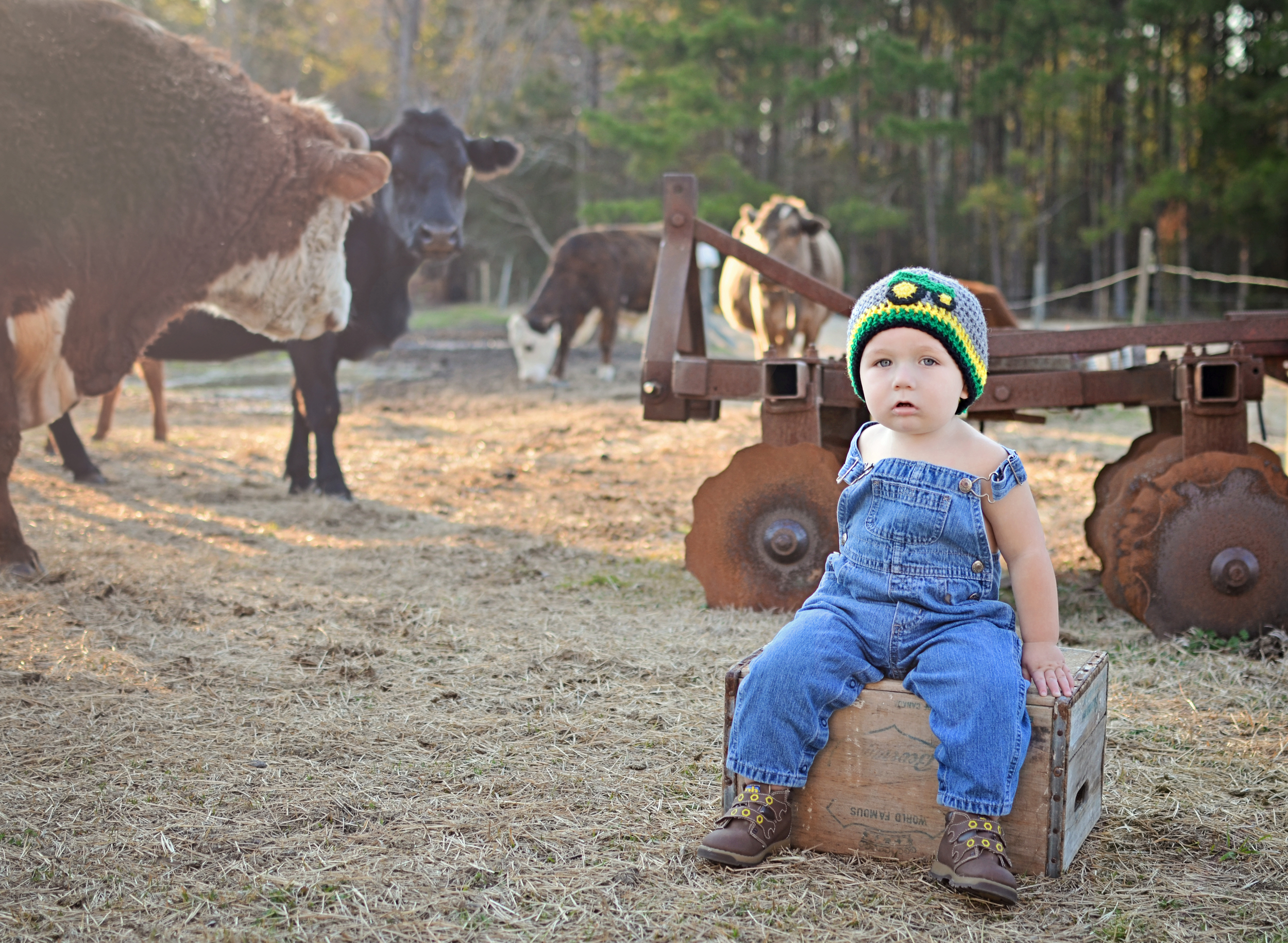 Little Country Boy