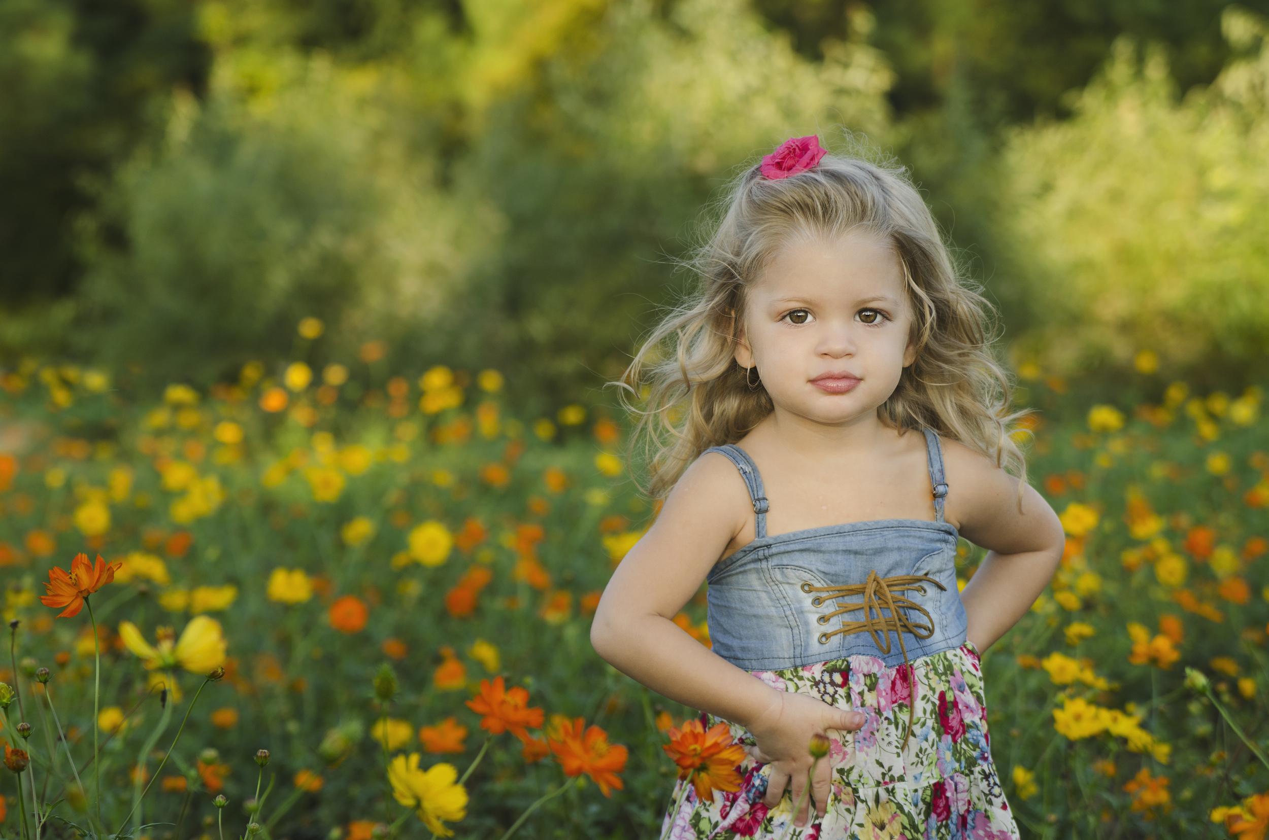 All Images 2012-2015 © Copyright Hannah Lamitina Photography