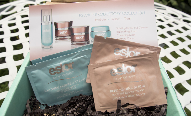 Eslor Introductory Collection