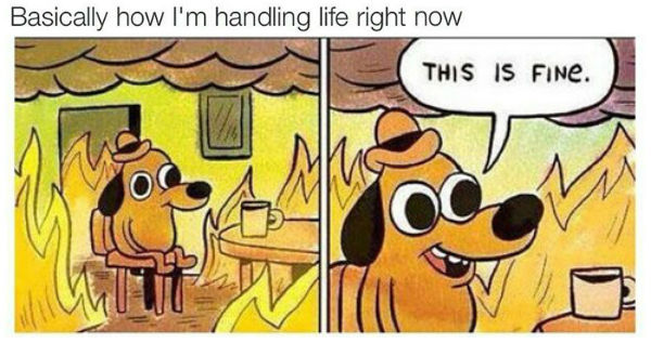 My life in June basically.