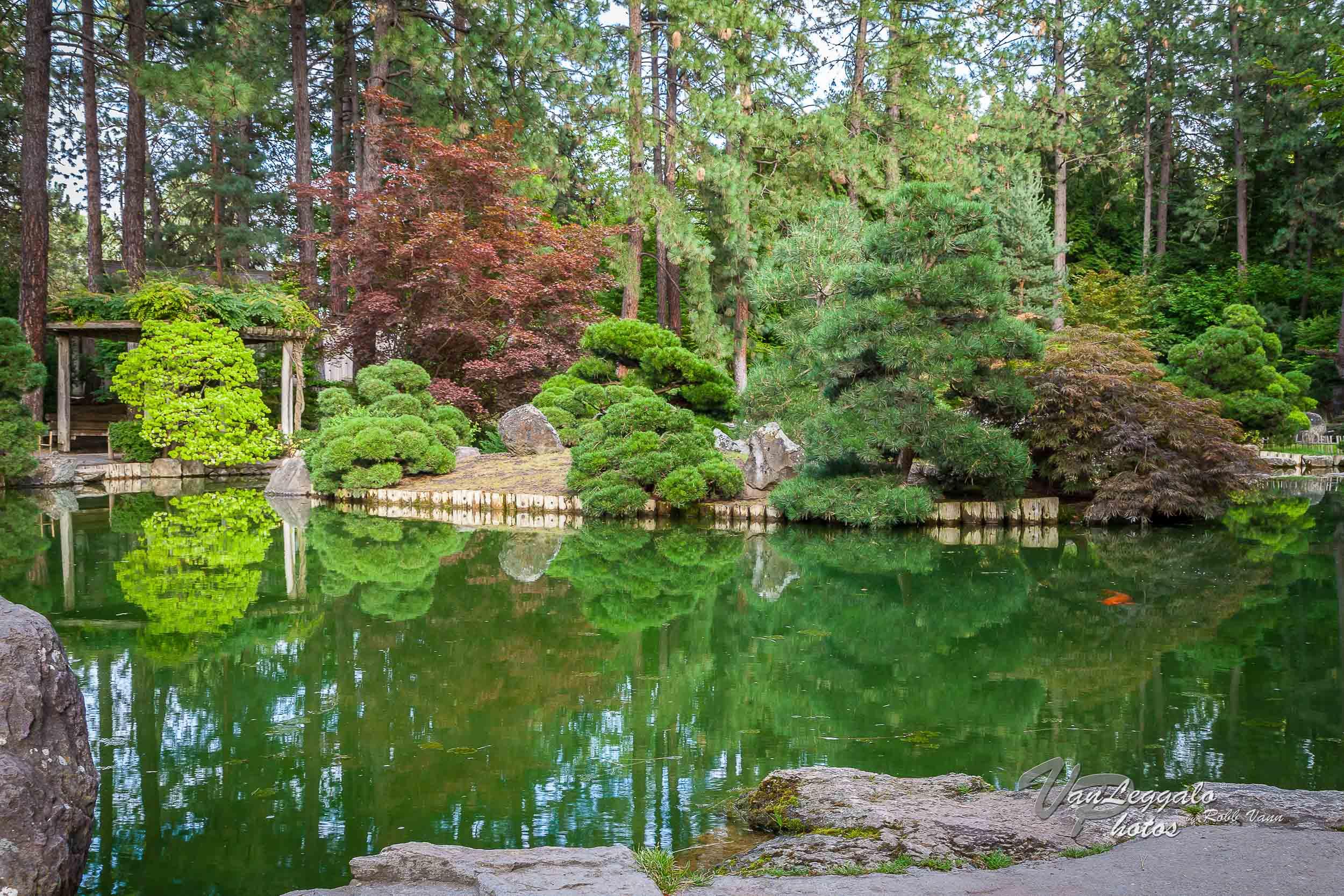 duncan-garden-spokane-washington-4.jpg