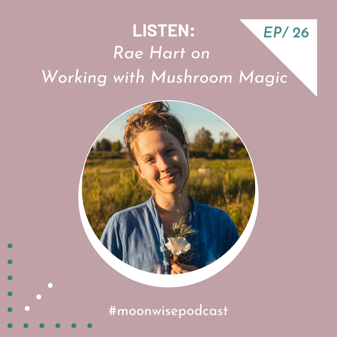 Episode 26: Listen - Learn about working with the magic of mushrooms with fungi farmer and herbalist Rae Hart.
