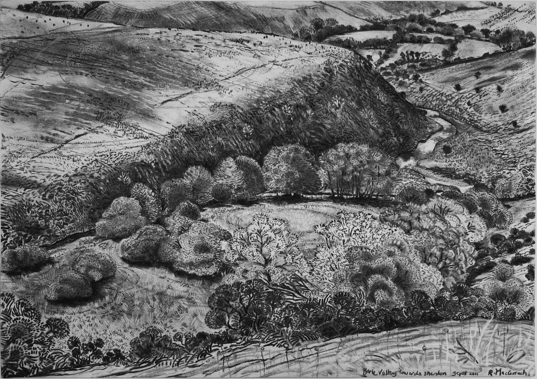 Barle Valley towards Sherdon