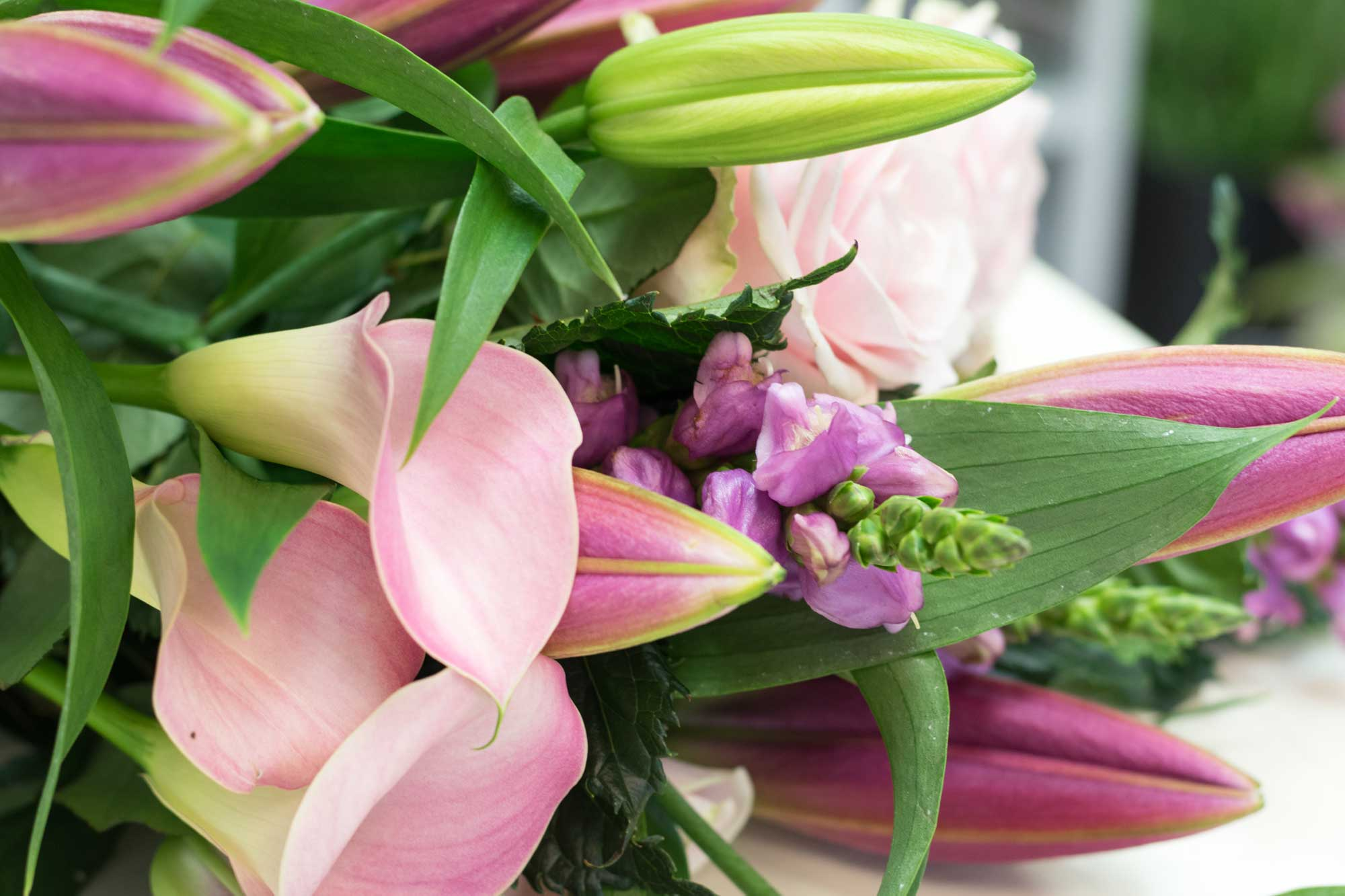 ScentaPosyflorist_Welcome.jpg