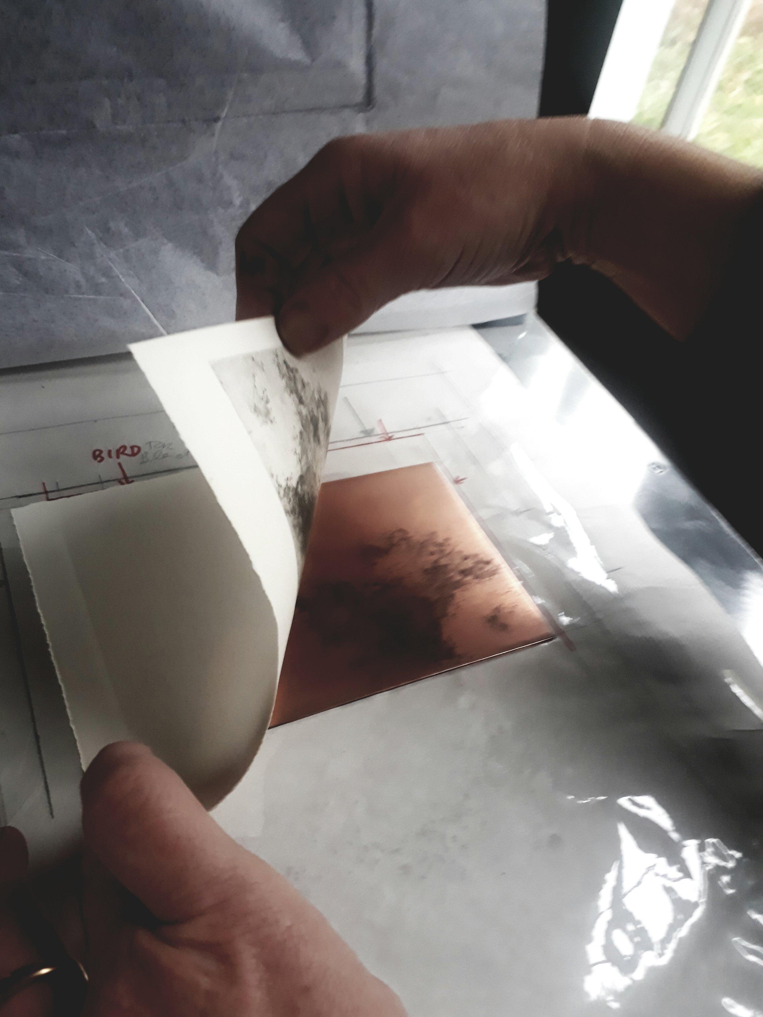peeling print copper.jpg
