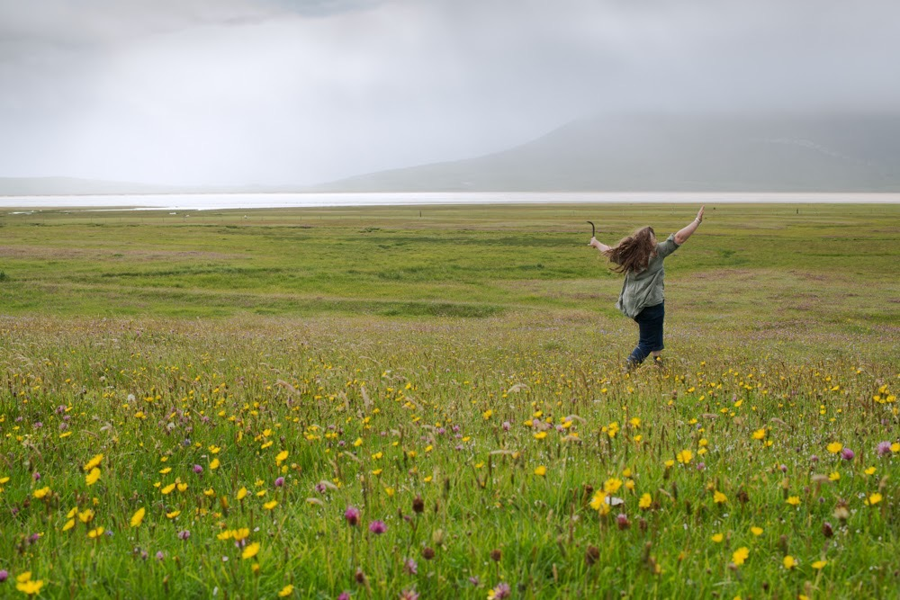 My first visit to the Machair captured so beautifully by Susan Bell Photography