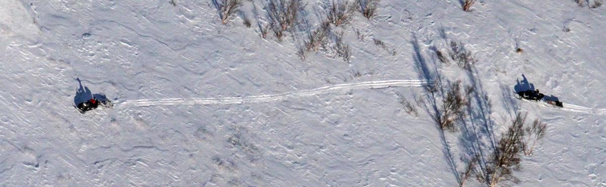 - Det må ikke tilrettelegges for snøskuterløyper i villreinområdene. Dette påpeker Villreinrådet i Norge i høringsuttalelsen som er sendt til Klima- og Miljødepartementet (KLD). Foto: Arne Nyaas