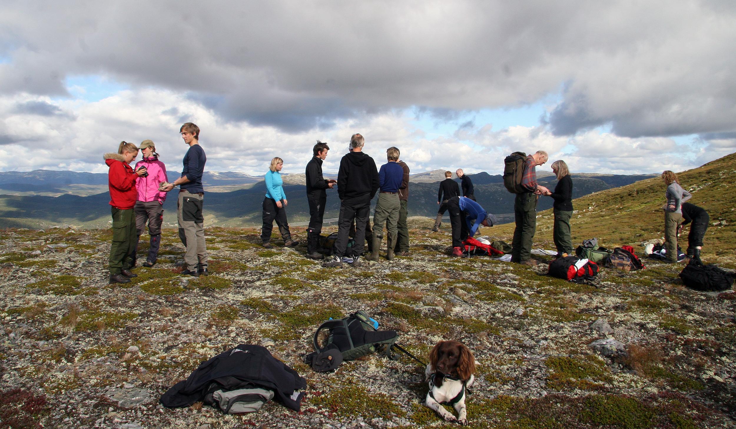 Studenter ved landslinja får bl. a naturen som klasserom. Foto: Anders Mossing