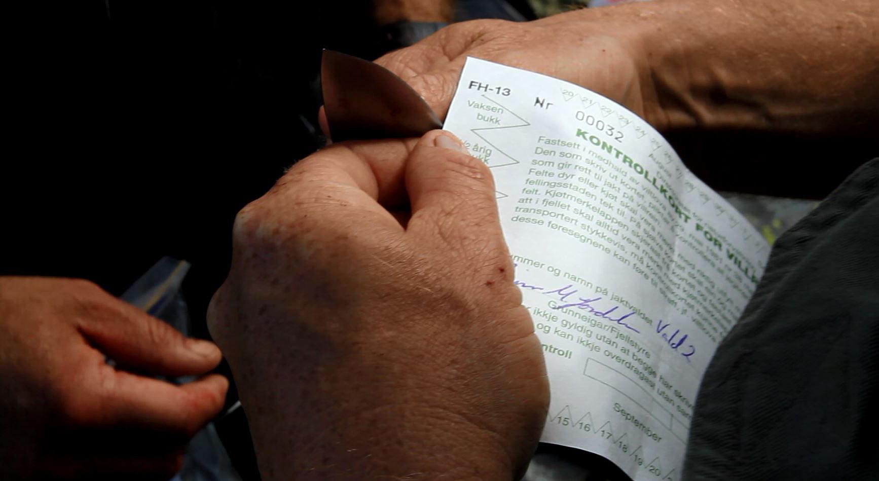 Ingen offentligrettslig krav om skriftlig tillatelse for overføring på Hardangervidda i år. Ill.foto: Anders Mossing