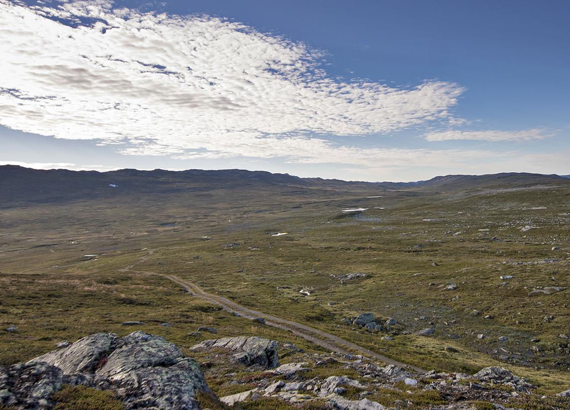Frå fjellet Galten mot Venevasshallet i Bykle, eit typisk landskap frå nordlege delen av Setesdal Austhei. Me ser traktorvegen som går i retning Venevatn, som ligg i grenseområdet mot Telemark. Foto: Kjell Bitustøyl