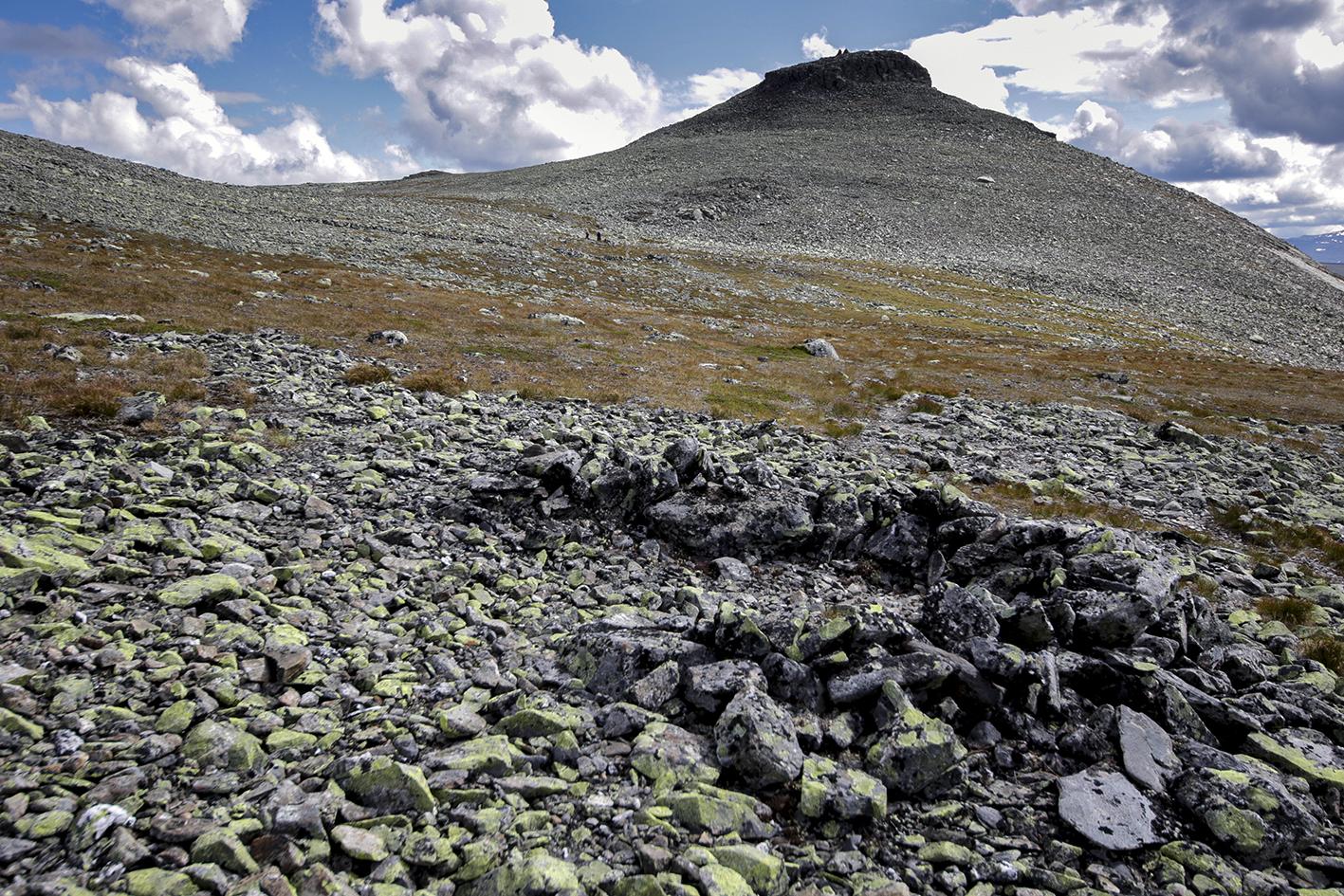 Bogastille i nærleiken av Kruk, i bakgrunnen ser me Krukknappen. Foto: Kjell Bitustøyl